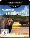 Adventure Yellowstone - Der Ruf der Wildnis (4K Ultra HD BLU-RAY)