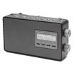 RF-D10 DAB-Radio Netz-/Batteriebetrieb DAB/DAB+ UKW-Tuner mit RDS