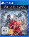 Shadows: Awakening (PlayStation 4)