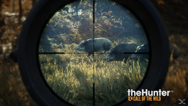 theHunter: Call of the Wild (PlayStation 4)
